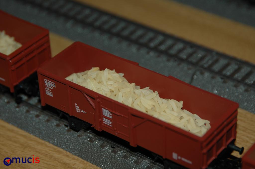 DG Reis aus Japan